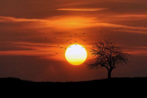 Sonne als das Himmelsfeuer
